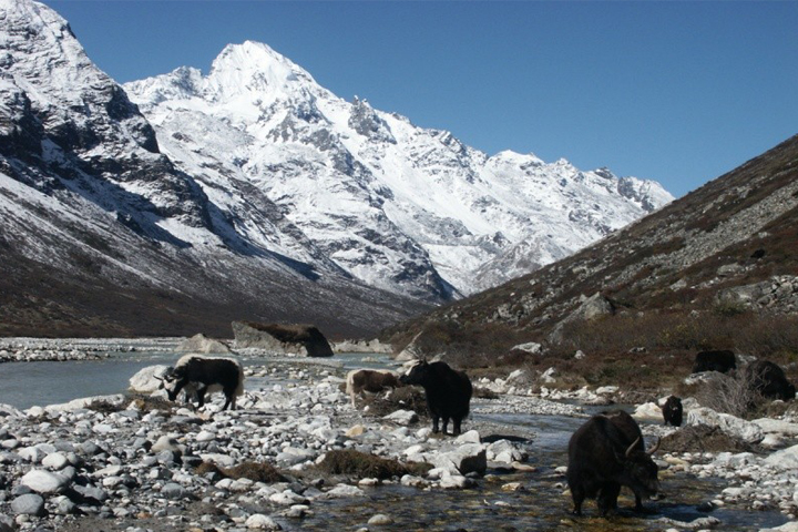 Tamang Héritage Trek